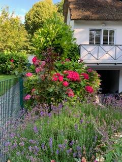 Ferienhaus Pauline Glücksburg